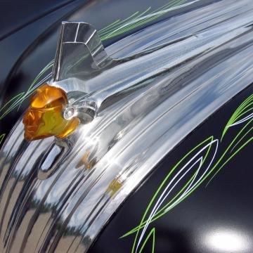 CHIEF - 8x10 fine art print
